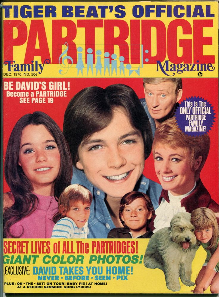 Tiger Beat's Official Partridge Family Magazine (December 1970)