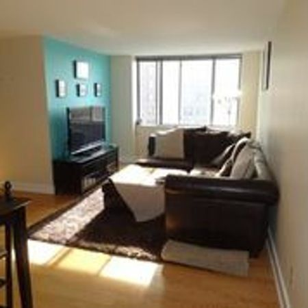 Super Cute and Affordable Metropolitan Condo!