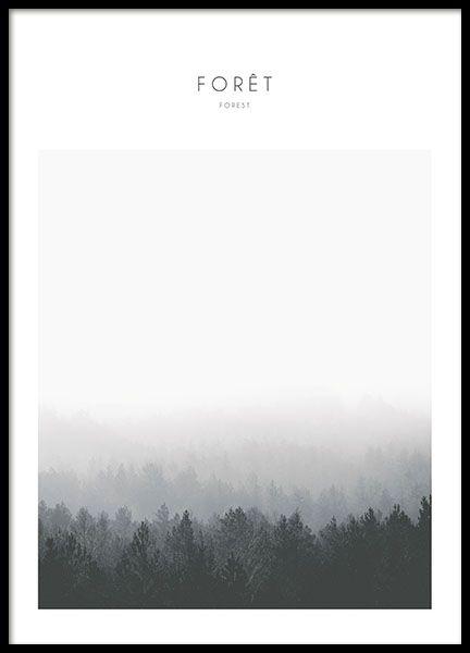 Plakater med naturbilde, skog, i svarthvitt.