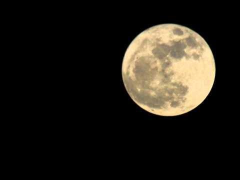"Super volle maan ""super moon"" including birds flying in front"