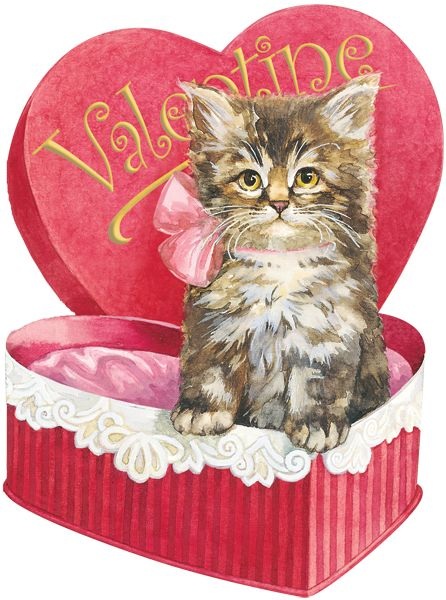 Kitten in Candy Box: Valentines Postcards, Vintage Valentines, Cat Valentines, Valentines Day, Cards Valentines, Kittens, Candy Boxes, Photo, Vintage Cat