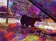 "New artwork for sale! - "" Savannah Cat Cat Wildcat Wild  by PixBreak Art "" - http://ift.tt/2vrBNKN"