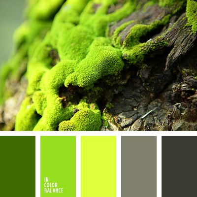желто-салатовый, зеленый, оттенки салатового, оттенки серого, салатовый, серый, темно серый, тёмно-зелёный, цвет зелени, цвет мха, яркий салатовый.