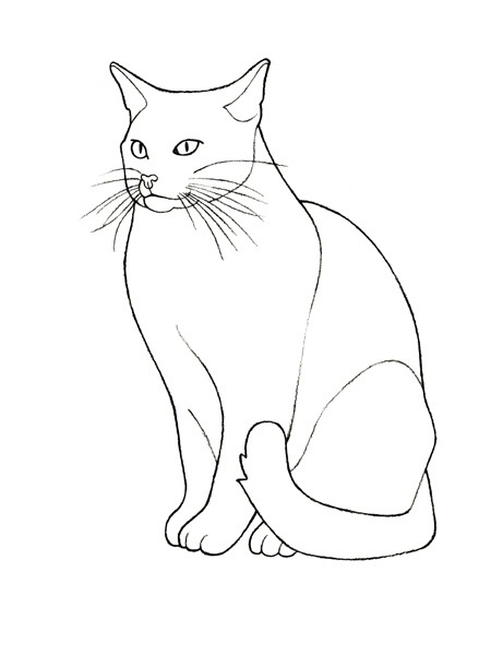 17 Best images about outline drawing on Pinterest ...