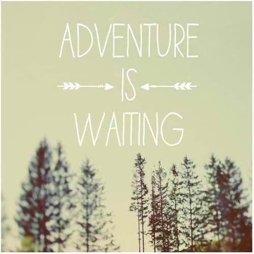 Best Friend Adventure Quotes. QuotesGram