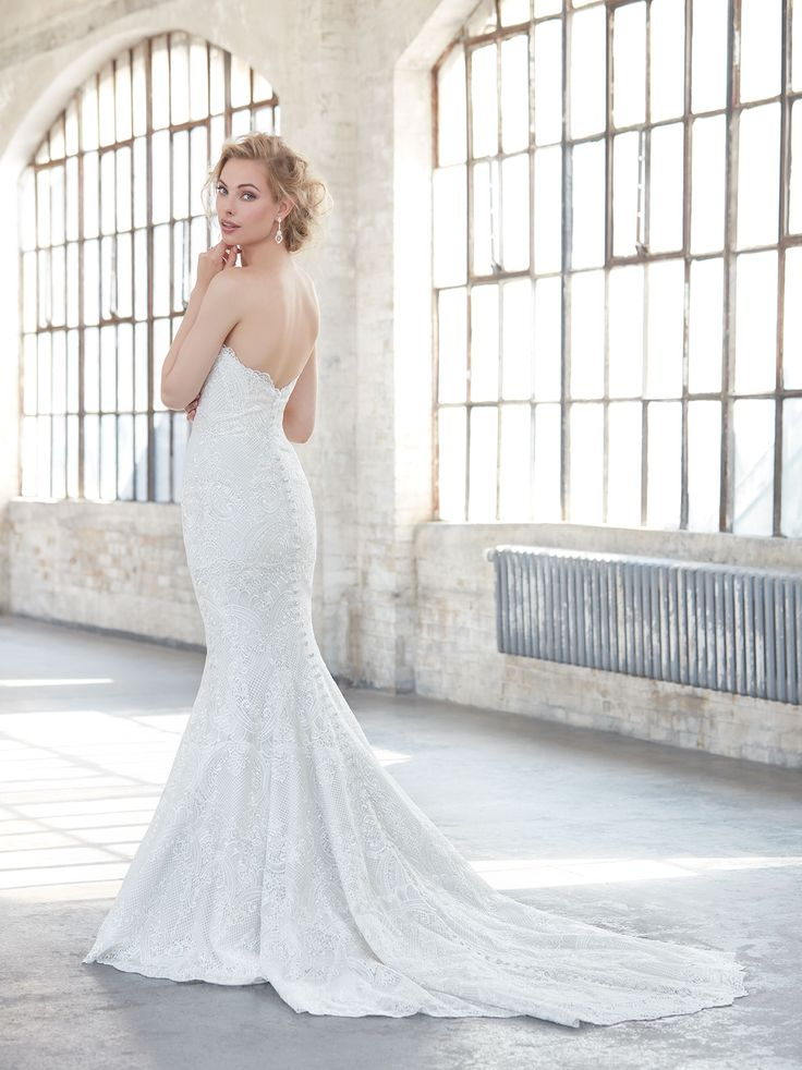 Cute  best Bella Lily Sample Sale images on Pinterest Wedding dressses Wedding gowns and Bridal dresses