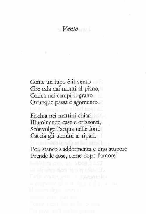lupodimore:  A. Bertolucci