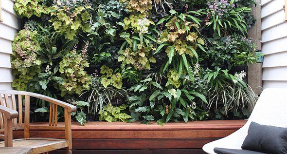 Resultado de imagem para tela de jardinagem