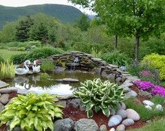 Best 25 outdoor fish ponds ideas on pinterest fish for How to remove algae from pond without harming fish