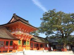 大分県宇佐市にある宇佐神宮は建物の色も綺麗ですね元気が出る色です今日は3.11東日本大震災から年が経ちます震災で亡くなられた方々のご冥福と1日も早い復興をお祈りいたします tags[大分県]