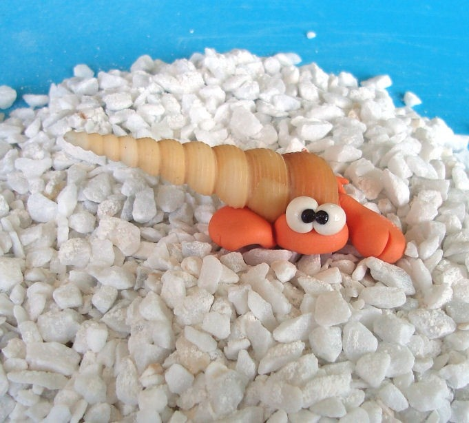 Hermit Crab - Paguro Bernardo (No41) - A Little Polymer Clay Creation. $6.00, via Etsy.
