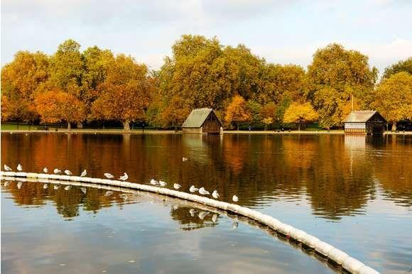 Гайд-парк, Лондон, Англия - Предоставлено: Hearst Shkulev Media LLC