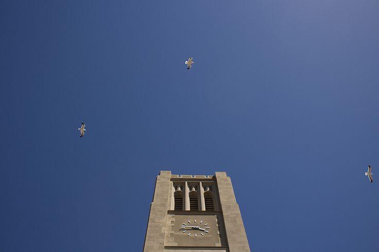 #universidad #tecnica #federico #santa #maria #utfsm #valparaiso #foris #cies #congreso #internacional #educacion #superior