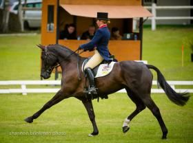 Great Britain's Kitty King won the dressage at the Samur CCI*** in France aboard Zidante.  | The Chronicle of the Horse