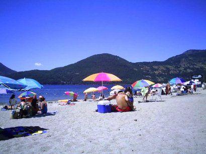 Chile - caburgua-playa-blanca - by @turichile