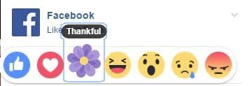 फसबक न शमल कय नय एमज- Facebook has added a new purple flower emoji do you know what it means?  फसबक न शमल कय नय एमज-  Facebook has added a new purple flower emoji do you know what it means?  Social media giant Facebook on Friday added a new reaction button for users. A purple flower emoticon joins the 'like' 'love' 'wow ' 'haha' 'sad' and 'angry' reactions buttons for posts. With this new option you can now be grateful (iOS) or thankful (if you're using Android or are logged on from a…