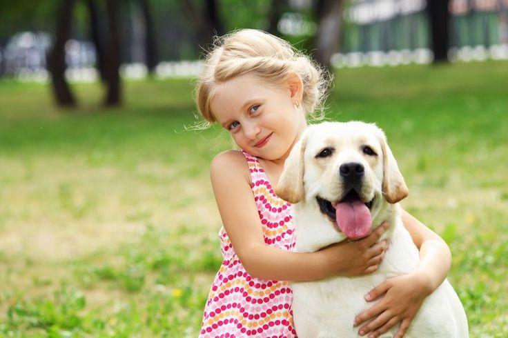 O psiej przyjaźni i czego nas ona może nauczyć