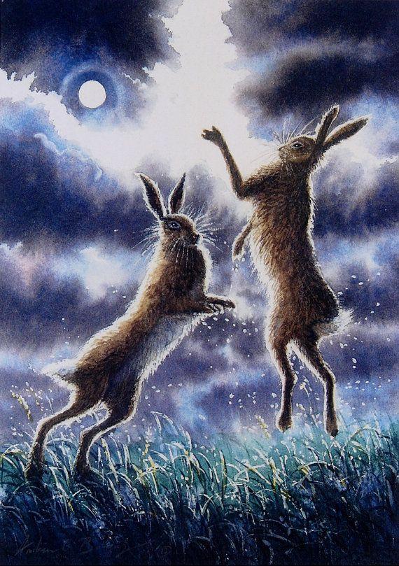 Full Moon Hares -  Andrew Bailey