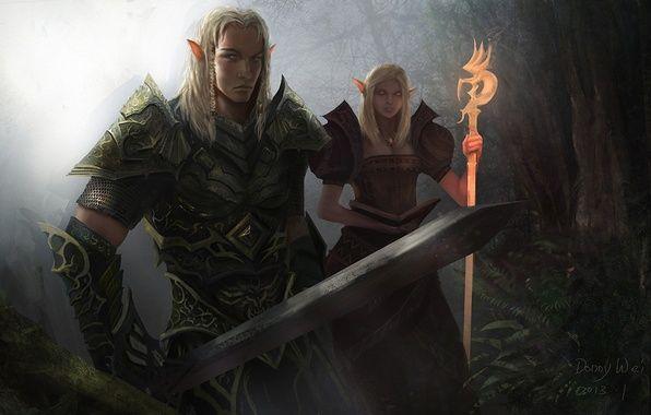 Фото обои посох, арт, маг, парень, воин, Donny Wei, девушка, меч, эльфы, лес