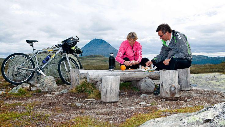 Sykkelen er et suverent fremkomstmiddel på fjellet. Flere veier fører inn i nasjonalparker og fjellområder.