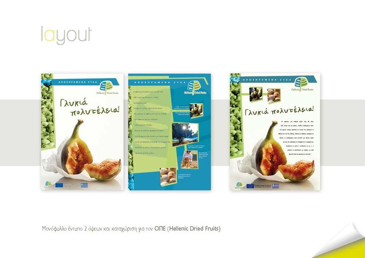 Mονόφυλλο έντυπο 2 όψεων και καταχώριση για τον OΠE (Hellenic Dried Fruits)