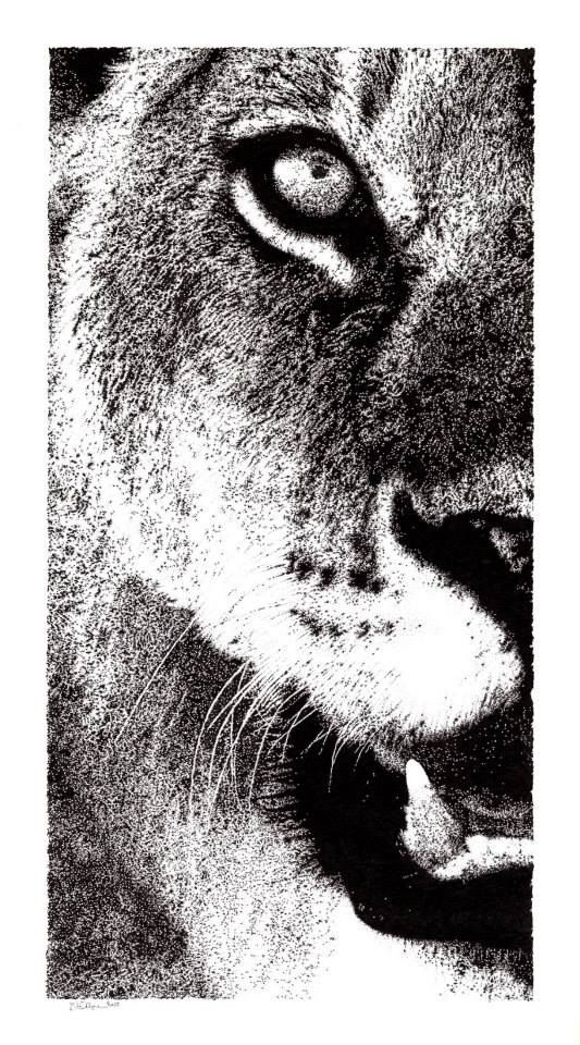 """Hypnotĭcus"" Inchiostro di china su carta ruvida 200 gr. 2015 - 36x66 cm #art #b&w #animals"