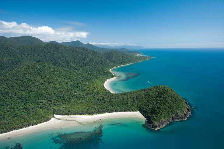 Cape Tribulation, Tropical North Queensland is a bushwalking paradise with many short walks taking in the beaches or rainforest. #TropicalNorth #Capetribulation #bushwalking