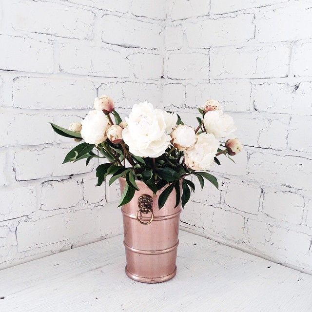 Peonies + copper vase.