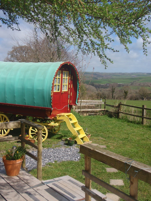 Old Oak Gypsy Wagon, Carmarthenshire. Come and stay on a working organic dairy farm in a traditional Romany bow top wagon, restored to its former glory http://www.organicholidays.co.uk/at/3177.htm