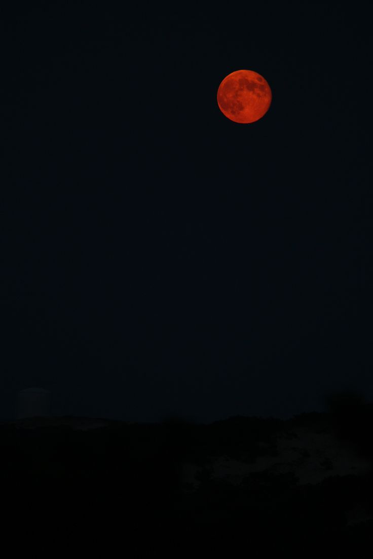 """bellassweetembrace: """" La Luna Rosa… bella ;-) """""""