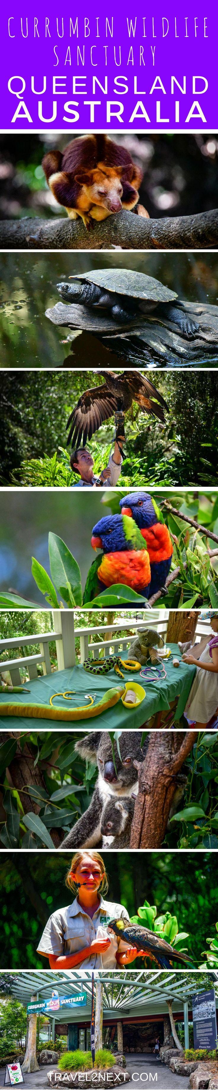 Currumbin Wildlife Sanctuary - The Lost  Valley in Queensland, Australia.