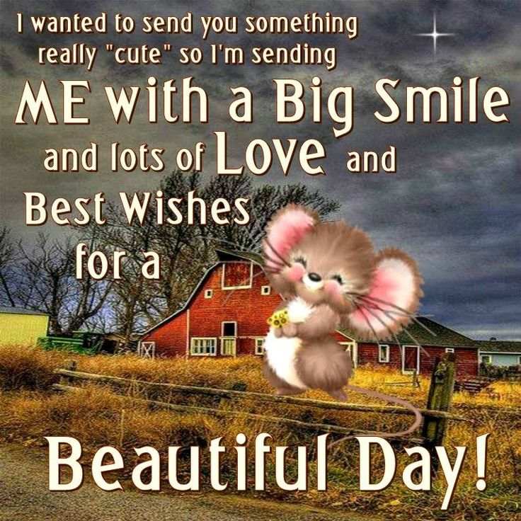 Inspirational Day Quotes: 60 Best Images About Have A Nice Day On Pinterest