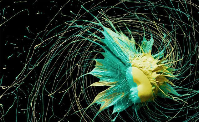 Images by Peter Schafrick, centrifugal force
