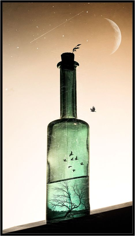 Night in the Bottle by Vladimir Shipulin: Favourite Photomanipulations, Fun Photography, Dream, Photography Photos, Art, Interesting Images, Vladimir Shipulin, Interesting Stuff, Bottle By Vladimir