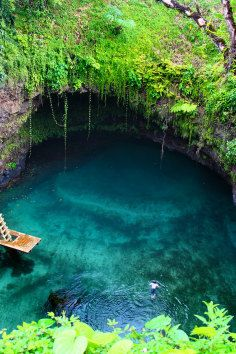 To Sua Ocean Trench is one of the ideallic sites that is located in Lotofaga village. Few sites are situated in the same area, including blowholes, and an incredible small beach on the western side. To Sua is otherwise translated as 'big hole' that is converted into a large swimming area. A ladder is installed on site for visitors access to and fro into this 30 meters deep seawaters.