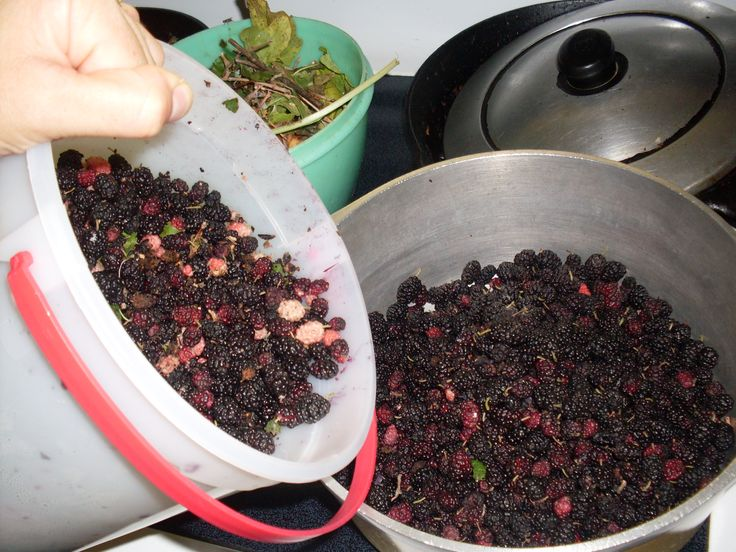 How to Make Mulberry Jam