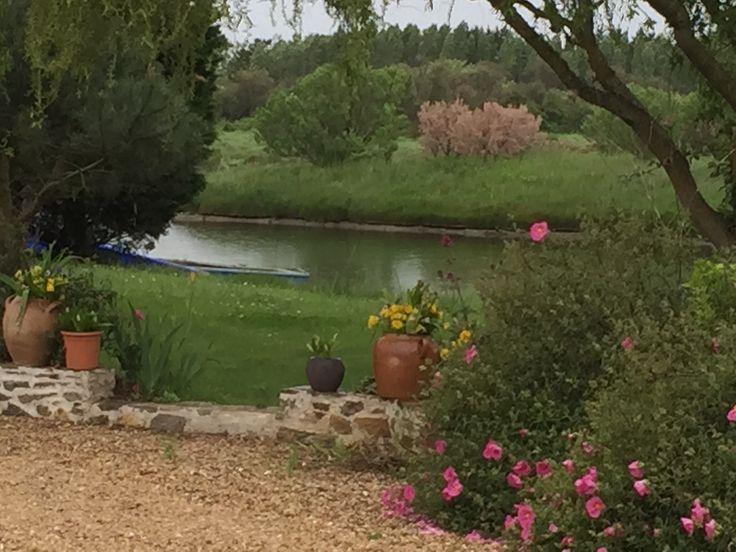 beautiful  French garden