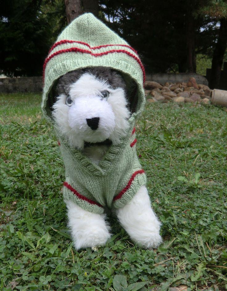 Manteau pour petit chien -N°1- en laine avec capuche Coloris vert Tricoté à la main