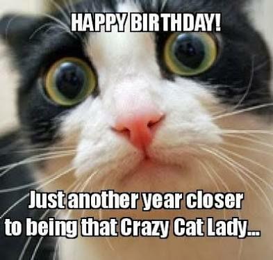 Crazy Cat Lady Happy Birthday.