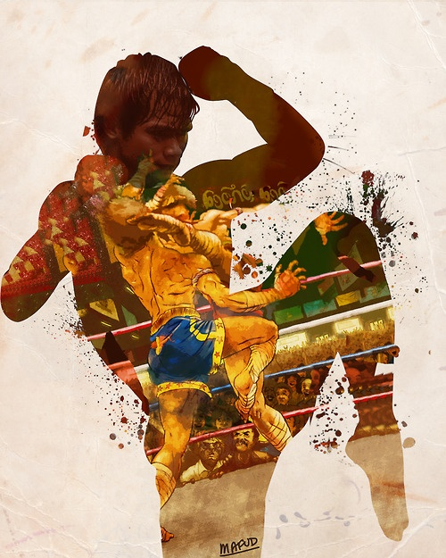 Tony Jaa poster - lively colors