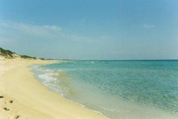 È la #Puglia la regione più felice d' #Italia...Puglia is the happiest region in Italy...and #Gargano is in Puglia! www.imelograni.it