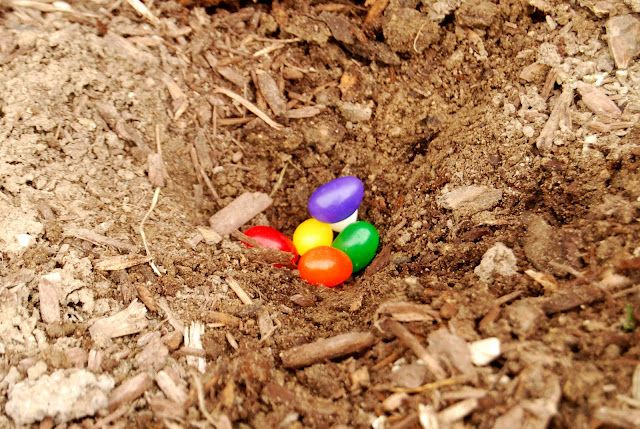 """Adorable Easter idea: plant """"magic"""" jelly beans with your kids the night before and then secretly place lollipops or balloons or other treats there in the morning for them to find!"""