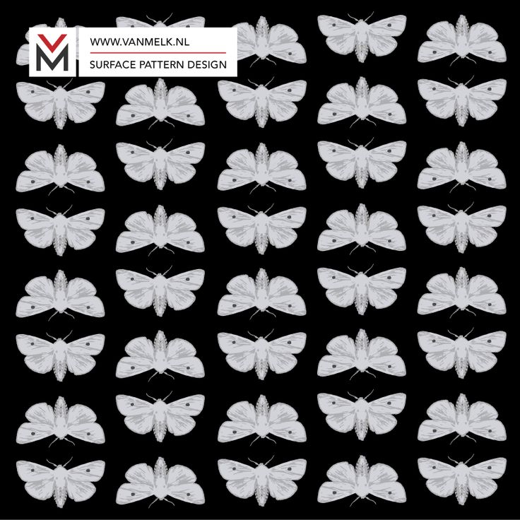 White moth surface pattern design, wrapping, textile design