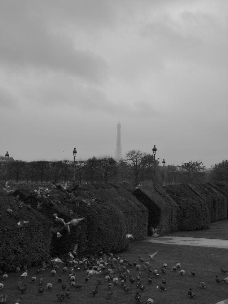 Tour Eiffel * Les Tuileries