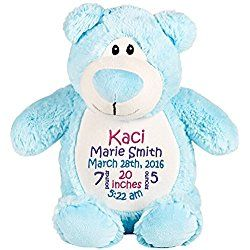 Personalized Stuffed Blue Bear with Embroidered Baby Block in Hot Pink, Purple, and Teal