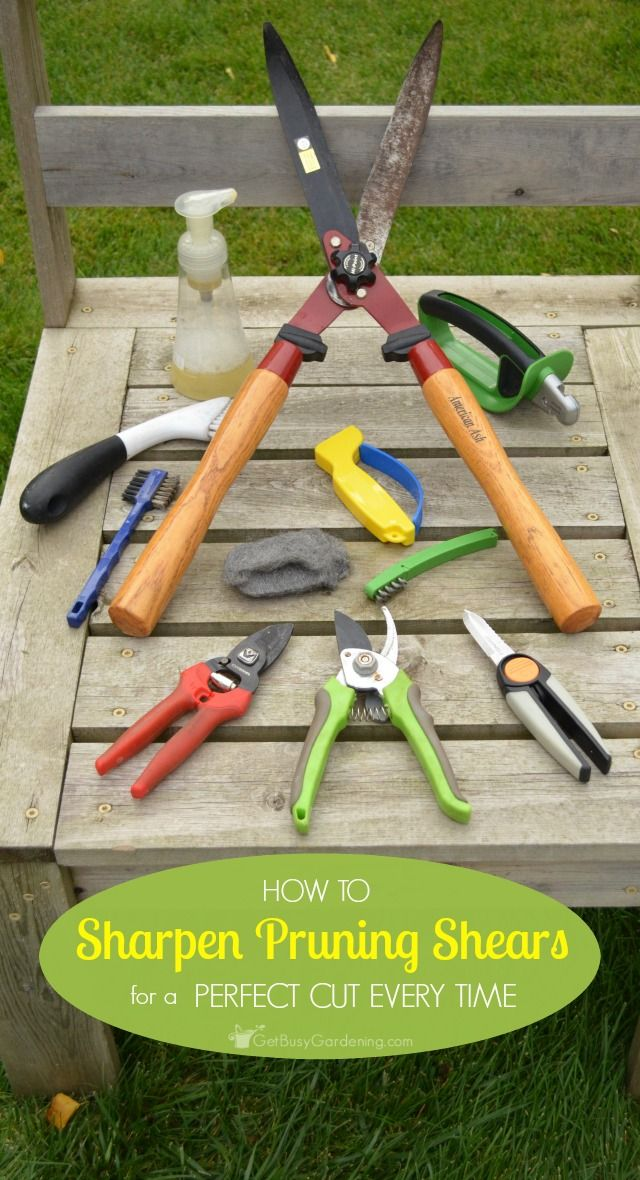 Just Because Your Pruning Tools Are Dull Doesnu0027t Mean You Need To Buy New