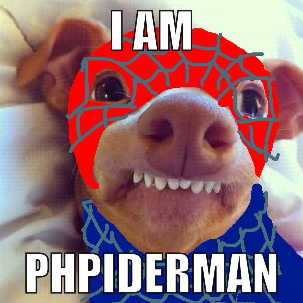 Phpiderman Phteven omg I love this puppy it's so cute & funny
