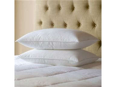 shop for sealy twin pack primaloft support pillows and other accessories at