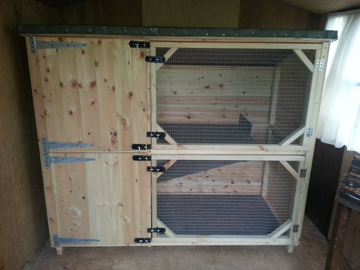 Large Double Hutch. Rabbit Or Guinea Pig Hutch Amazing Handmaiden By Boyles Pet Housing