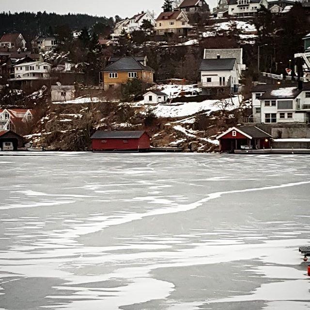 Is så langt øyet rekker  #vinter #is #grisefjorden